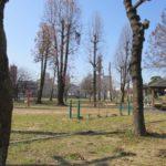 青柳公園(周辺)
